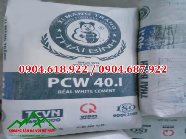 Xi măng trắng PCW 40i